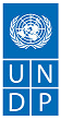 UNDP/INSTITUTE FOR PEACE AND CONFLICT RESOLUTION